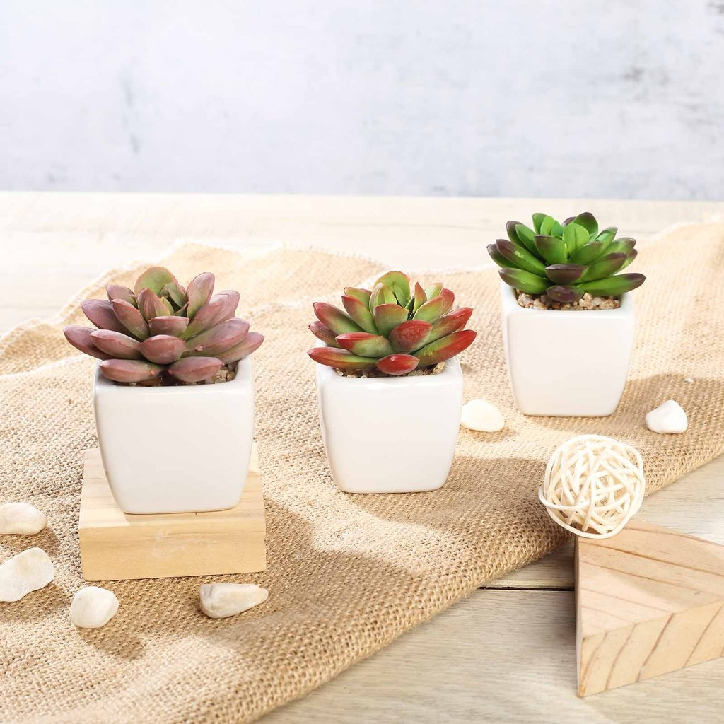 Efavormart Set of 3 | 3'' Assorted Mini Echeveria Artificial Faux Succulent Plants Mini Green Plants in Ceramic Pot with Rocks