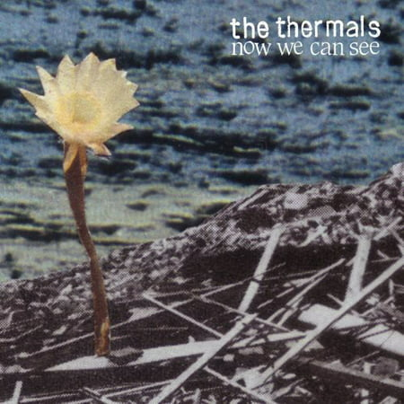 The Thermals - Now We Can See - Vinyl (7-Inch) (Sound Of Music Stars Then And Now)