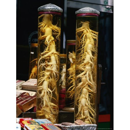 Bottled Ginseng Root at Namdaemun Market, Seoul, South Korea Print Wall Art By Richard (Ginseng Seeds For Sale In South Africa)