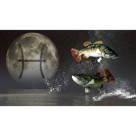 Pisces Is The Twelfth Astrological Sign Of The Zodiac Canvas Art   Daniel Eskridgestocktrek Images  19 X 11