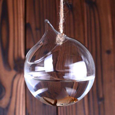 Brand New Wall hanging Vase for hydroponics Plants goldfish bowl vase Styled Decor - image 4 de 7