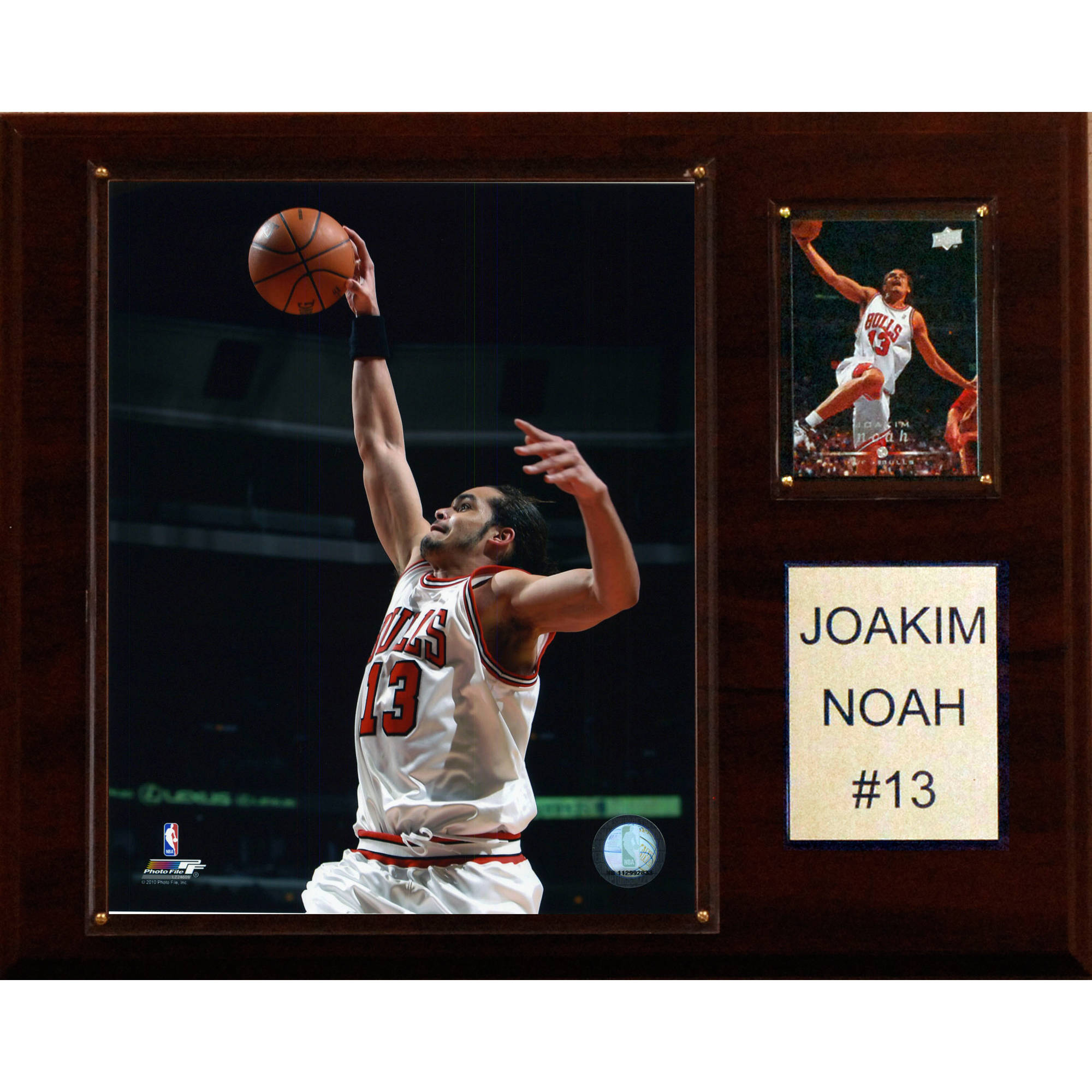 C&I Collectables NBA 12x15 Joakim Noah Chicago Bulls Player Plaque
