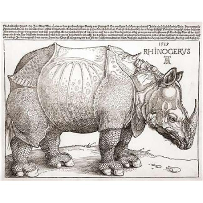 Bentley Global Arts PDX264858SMALL The Rhinoceros Poster Print by Albrecht Durer, 11 x 14 - Small