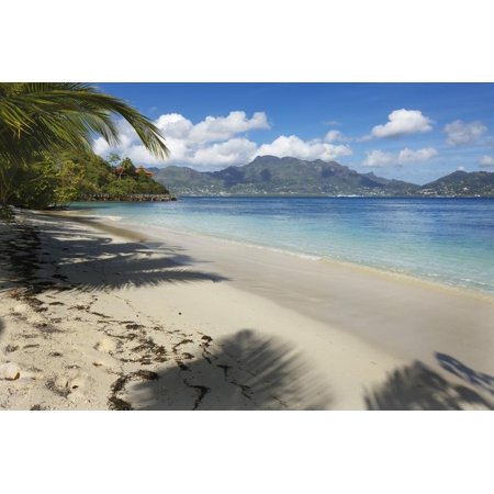 Palm Trees Providing Shade Along a Deserted Sandy Beach in the Seychelles, Indian Ocean, Africa Print Wall Art By Garry (Best Eye Shades For Indian Skin)