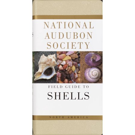 National Audubon Society Field Guide to Shells : North America (Field Shell)