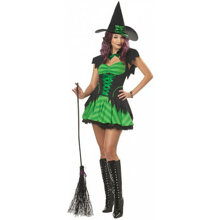 Hocus Pocus Witch Adult Costume - - Hocus Pocus Witches