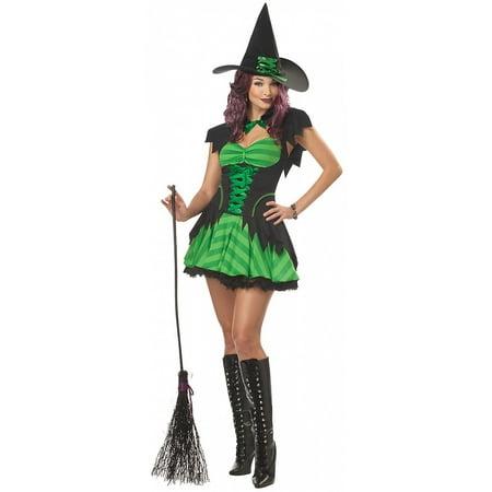 Hocus Pocus Witch Adult Costume - Large