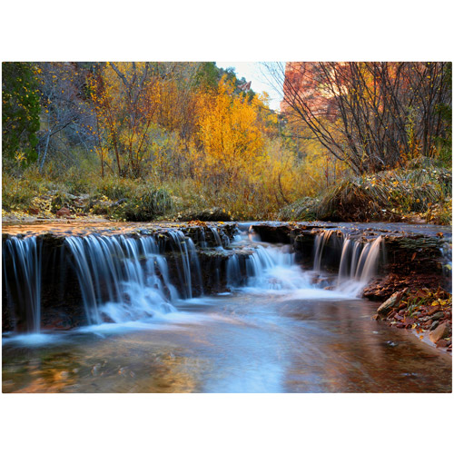 "Trademark Fine Art ""Zion Autumn"" Canvas Art by Pierre Leclerc"