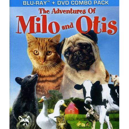 Adventures Of Milo   Otis   The Adventures Of Milo And Otis  Blu Ray   Blu Ray