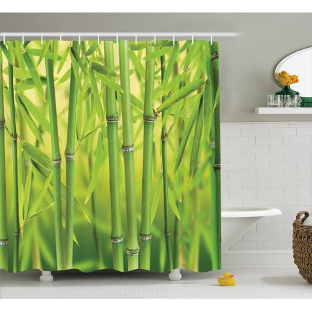 Bamboo Decor Shower Curtain Set Close Up Of Bamboo Sprouts Stems