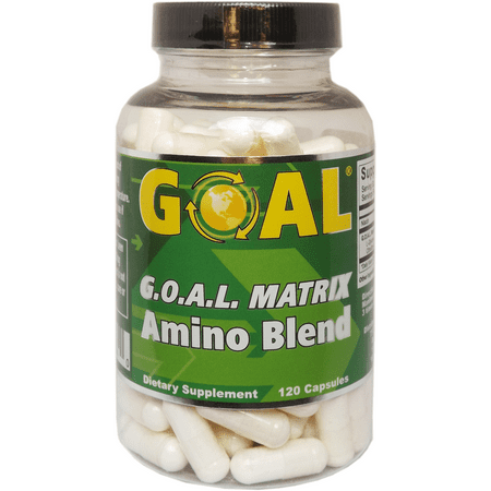 GOAL - G.O.A.L. MATRIX Amino Acids Complex Silver Label 120 Capsules - Best NO Supplement L-Glycine L-Ornithine L-Arginine L-Lysine Combination Nitric Oxide Boosters for Men and (Best Creatine Nitric Oxide Supplement)