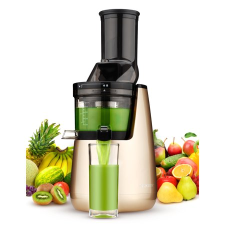 Ainfox Masticating Juicer with Low Speed Technology for Retaining Nurtients Masticating Juicer 250Watt Quietly Motor 50RPMs Slow Masticating (Best Juicer For 50 Dollars)