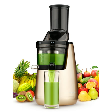Ainfox Masticating Juicer with Low Speed Technology for Retaining Nurtients Masticating Juicer 250Watt Quietly Motor 50RPMs Slow Masticating (Best Cheap Masticating Juicer)