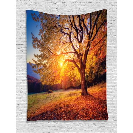 Fall Tree Tapestry, Big Majestic Autumn Tree Shedding Faded Leaves on the Hill Slop Seasonal Landscape, Wall Hanging for Bedroom Living Room Dorm Decor, Brown, by Ambesonne ()