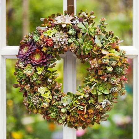 8.2''/9''/10.6'' Heart /Ring Shape Succulent Hanging Frame Succulent Plant Holder Wreath Frame Metal Planter Holder Iron Wire Hanging Flower Pot Home Garden Patio Decoration