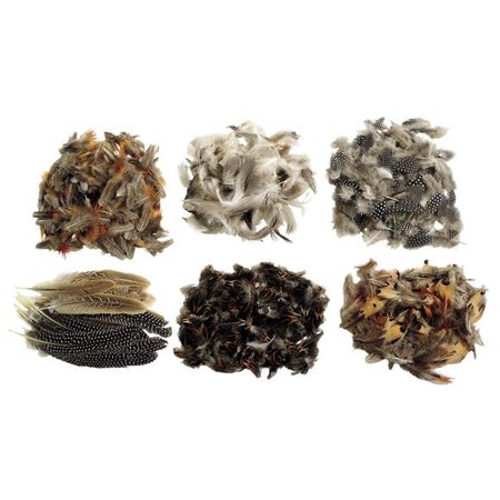 Colorations Natural Feathers Classroom Pack (Item # NATURAL) - Classroom Items