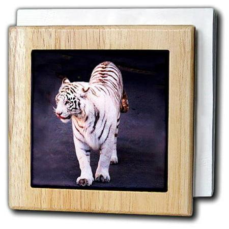 3dRose White Tiger, Tile Napkin Holder, 6-inch