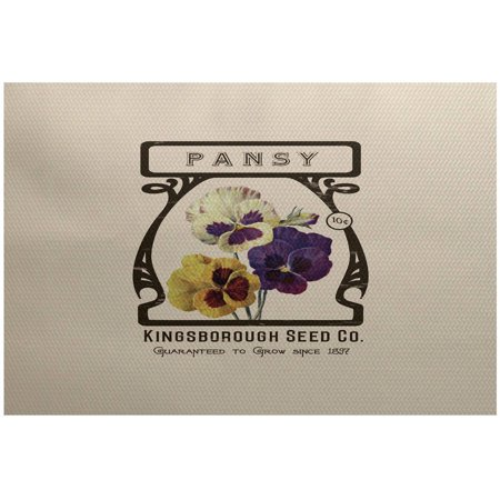 - Simply Daisy 3' x 5' Pansy Floral Print Indoor Rug