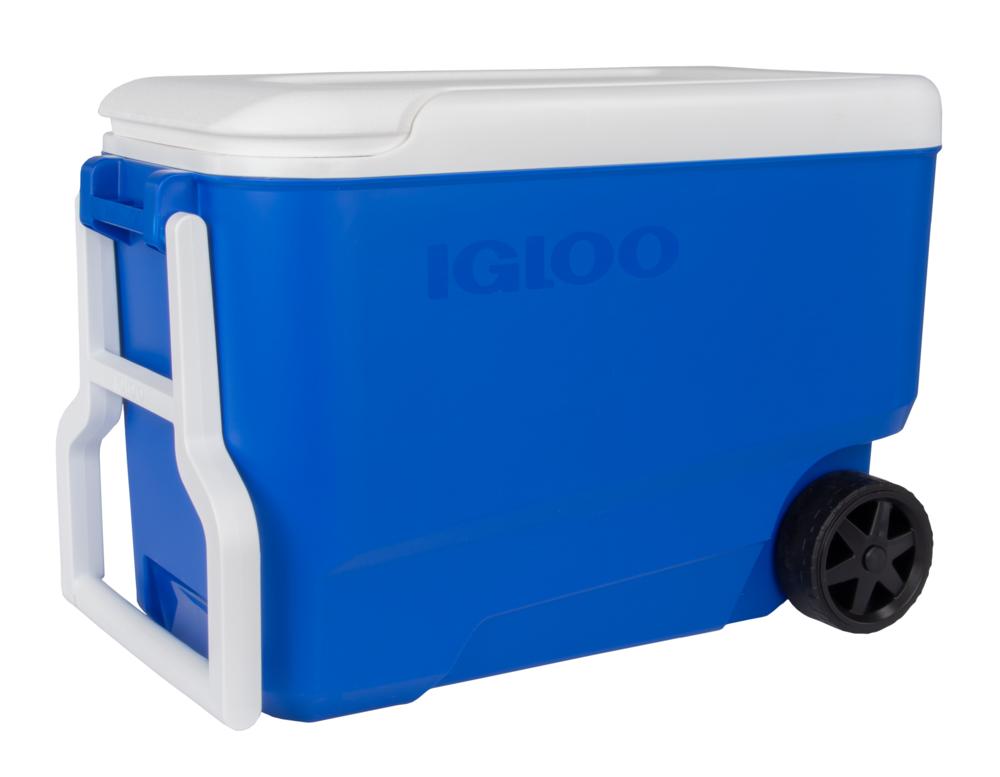 Igloo 38-Quart Cooler ONLY $19...