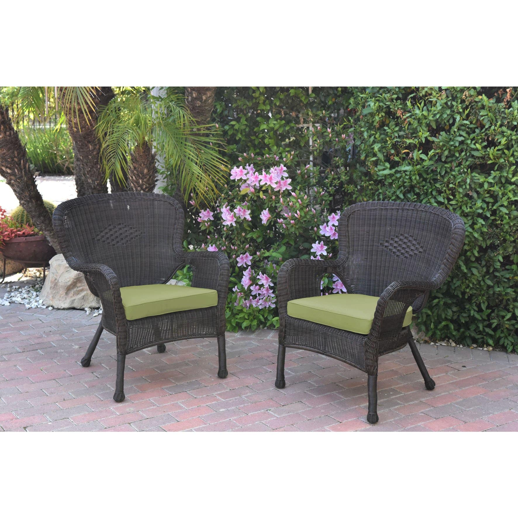 Jeco  Windsor Espresso Resin Wicker Chairs with Cushions (Set of 2)