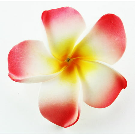 Hawaiian Flower Hair Clip Tropical Flower Summer Hair Accessory (Pink - Hawaiian Hair Clips