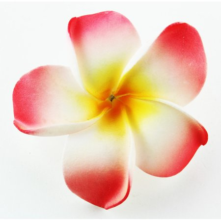 Hawaiian Flower Hair Clip Tropical Flower Summer Hair Accessory (Pink Yellow) (Hair Flower Clips)