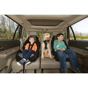 Cosco Highback 2-in-1 Booster Car Seat, Zahari - Walmart.com