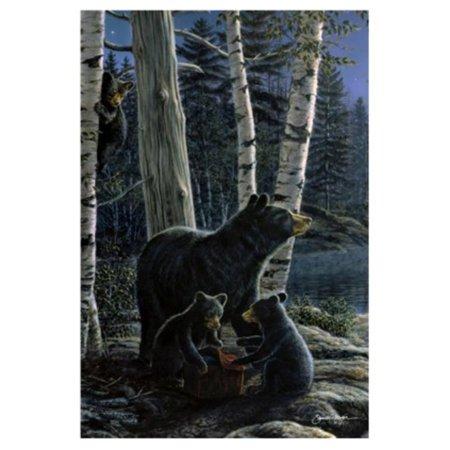 Toland Home Garden Bear Picnic (Bear Flag Pattern)