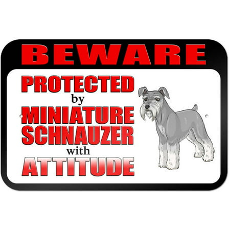 Schnauzer Miniature (Beware Protected by Miniature Schnauzer with Attitude Sign)