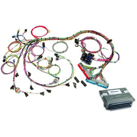 Painless Performance Products 60713 EFI Wiring Harness 1998-2004 GM on universal hot rod wiring harness, 1997 f250 motor wiring harness, drag race wiring harness,