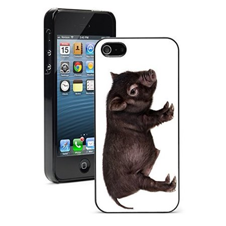 Baby Pot Belly (Apple iPhone 6 6s Hard Back Case Cover Baby Potbellied Hog Pig (Black) )