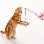 For Pet Cat Bell The Dangle Faux Mouse Rod Roped Funny Fun Play Playing Toy