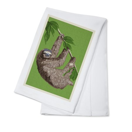 Three Toed Sloth   Letterpress   Lantern Press Artwork  100  Cotton Kitchen Towel
