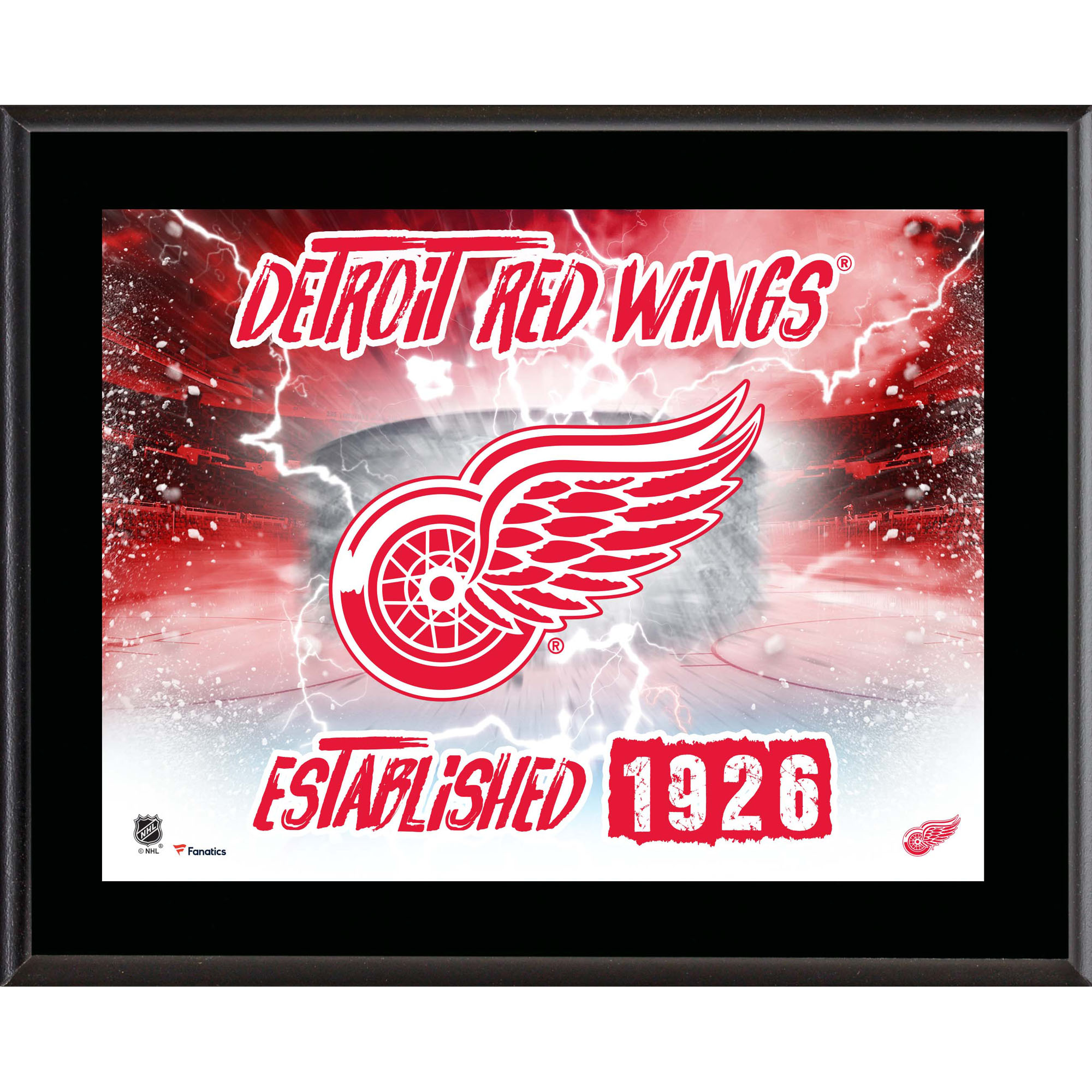 "Detroit Red Wings Fanatics Authentic 10.5"" x 13"" Sublimated Horizontal Team Logo Plaque - No Size"