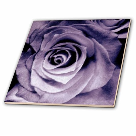 3dRose Lavender purple rose - Ceramic Tile, 4-inch