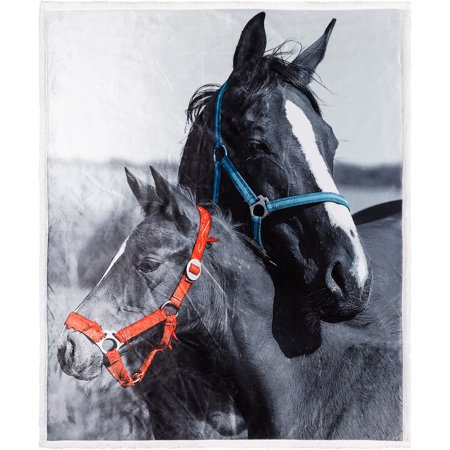 Photo Real Reversible Velvet to Sherpa Horses Throw Blanket, 1 Each