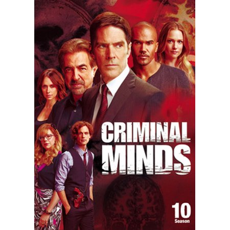 Criminal Minds: Season 10 (DVD)