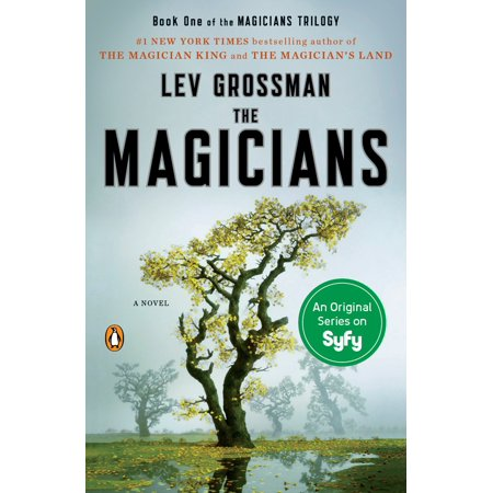 The Magicians A Novel Walmart