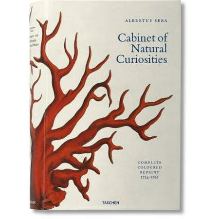 Albertus Seba's Cabinet of Natural Curiosities XL (Cabinet Of Curiosities Halloween Party)