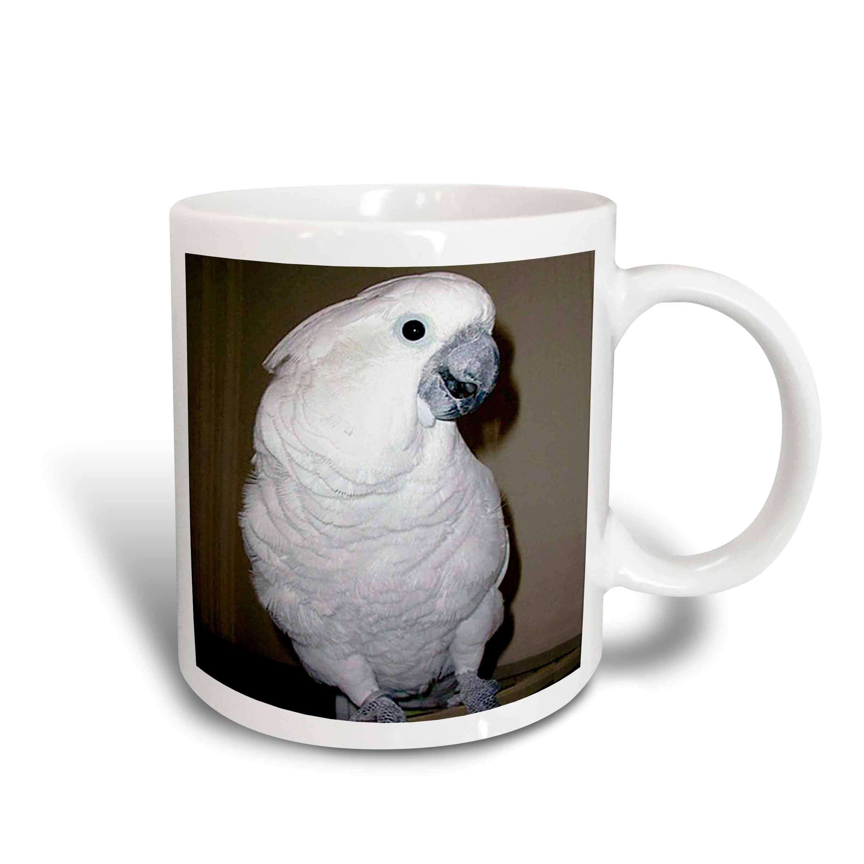 3dRose Umbrella Cockatoo, Ceramic Mug, 15-ounce by 3dRose