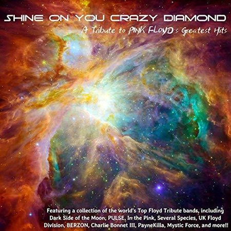 Shine On You Crazy Diamond: A Tribute Pink Floyd