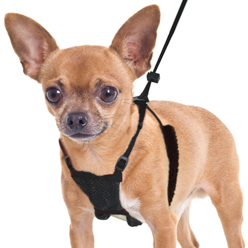 Yuppie Puppy Anti-Pull Mesh Harness, Multiple Sizes