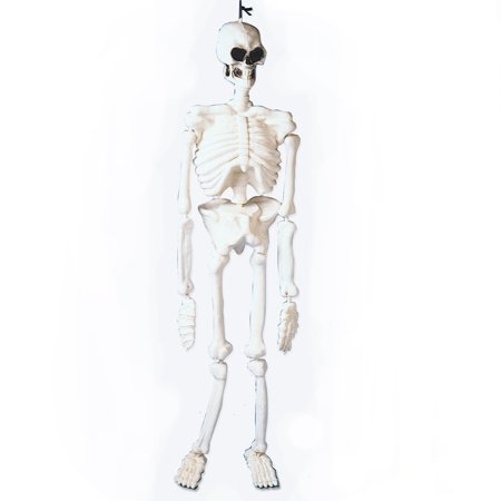 US Toy Laboratory Skeleton Halloween Decoration 4.5' Prop, Glow in the - Toys R Us Halloween Decorations Australia