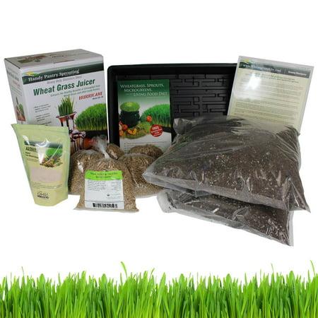 Organic Wheatgrass Growing Kit w/ Hurricane Stainless Steel Wheat Grass Juicer- Everything to Grow & Juice