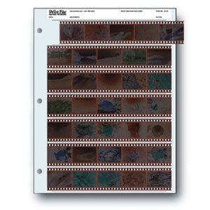 Printfile 35mm Negative Preserver 25pk (Holds 35 Frames)