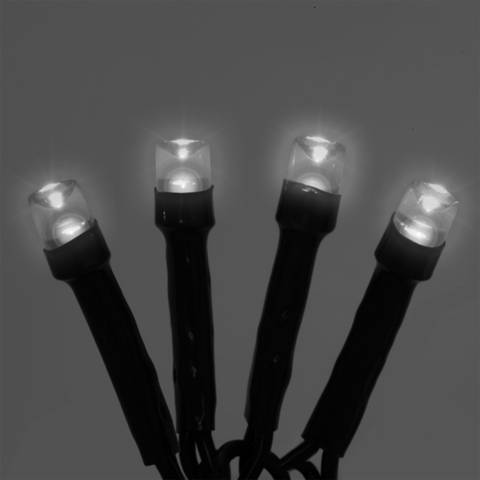 Flipo 50 LED Battery Operated String Lights