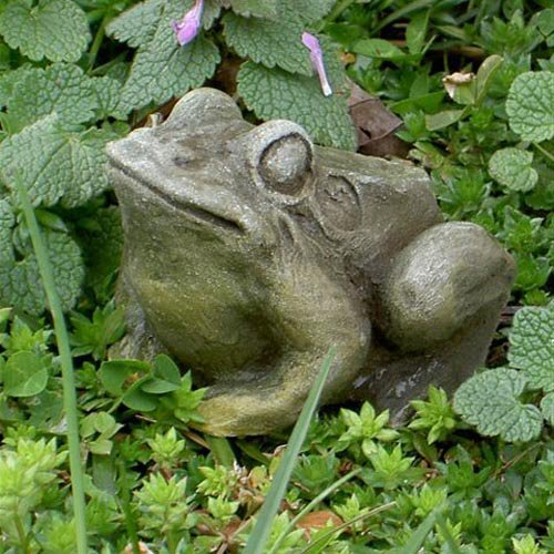 Eddie the Toad Garden Statue by Brookfield Co