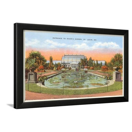 - Shaw's Garden, St. Louis, Missouri Framed Print Wall Art