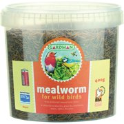 MEALWORMS BAG