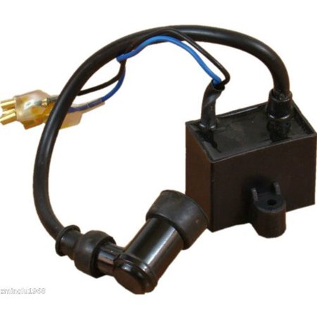 Ignition Coil CDI for 49cc 60cc 66cc 80cc Motorized bicycle BikeOne Year Warranty By Glenparts Cdi Ignition Box Igniter